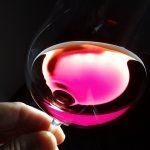 赤ワインテイスティング